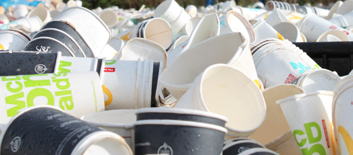 Paper cups ready to be recycled through the Simply Cups scheme